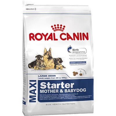 Royal Canin Maxi Starter Mother and Babydog Puppy Large Breed Dog Food 4kg
