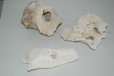 Aquarium Natural Coral Cichlid Rock 3 Pieces Suitable For All Aquariums MB1D
