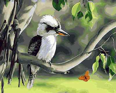 Acrylic Painting By Numbers Kit Canvas Kookaburra on Tree S5 50*40cm A029 New