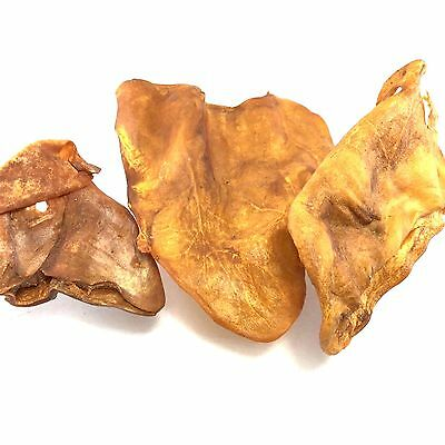 Dog Chew Natural Pig Ear High Calcium Protein Good Health Teeth Care No Hormones