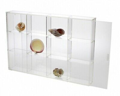 Seashell Display Case - Large 12 Compartments