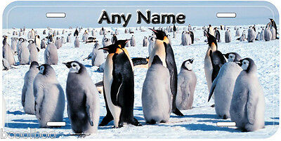 Emperor Penguins Aluminum Any Name Personalized Car Auto Novelty License Plate