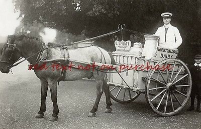 RP REPRO # horse drawn dairy milkman