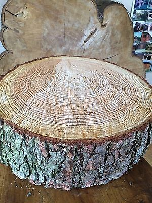 "16"" (40cm) Rustic Log slice x 4"" thick,  Wooden Wedding cake stand, centerpiece,"