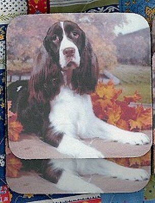 SPRINGER SPANIEL Rubber Backed Coasters #0942
