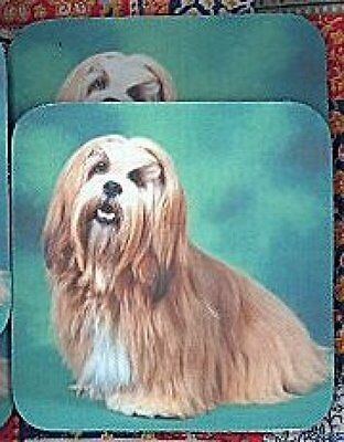 LHASA APSO Rubber Backed Coasters #0637