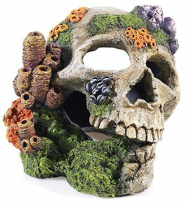 Large Human Skull Bubbler with Corals Aquarium Ornament Fish Cave with Airstone