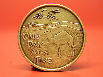 Recovery Medallion - Chip- Camel - One Day At A Time - Bronze