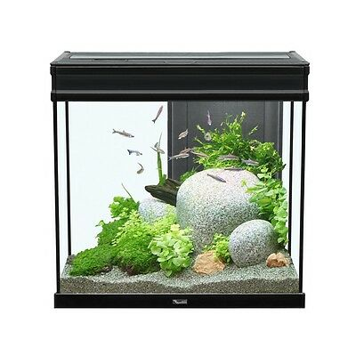 AQUARIUM ELEGANCE EXPERT 60x40 LED NOIR