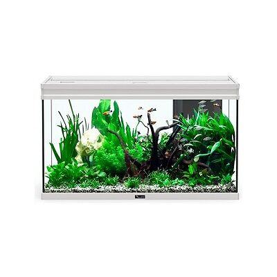 AQUARIUM ELEGANCE EXPERT 100x40 LED INOX