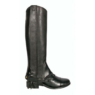 Ariat Cameo Chaps