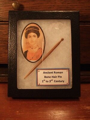 Display Case with excavated Roman Bone Hair Pin