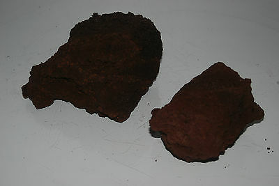 Natural Aquarium Red Lava Rock 2 Medium Pieces Suitable for All Aquariums BB