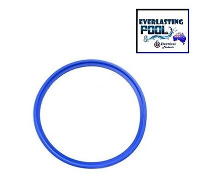 AutoChlor Thread Lock Cell Housing Gasket / 'O'ring