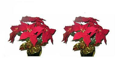 "2 Artificial Red Velvet Poinsettia Arrangements Centerpieces 18"" Tall New"