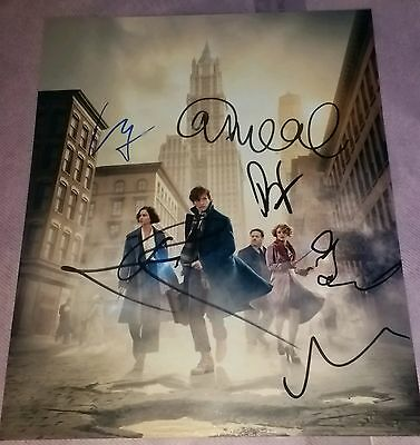 SIGNED EDDIE REDMAYNE 'FANTASTIC BEASTS AND WHERE TO FIND THEM' CAST  8x10 PHOTO