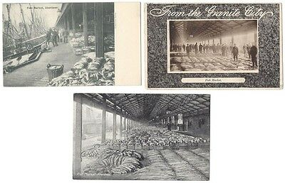 ABERDEEN Fishmarket, 3x Old Postcards, One Postally Used 1904