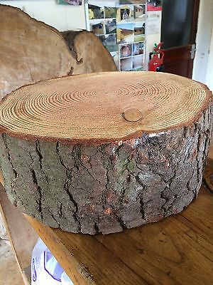 """14"""" Rustic Log slice, 4"""" / 5"""" Thick Wooden Wedding cake stand,  centre piece,"""