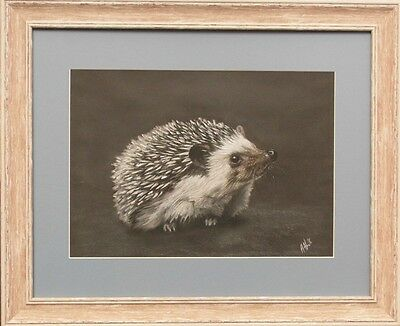 Happy Hedgehog Original Pastel Art Drawing By Heather Hindle Not A Print