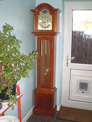 A good rare Hermle multi dial Yew wood chiming grandfather clock. serviced 8day.