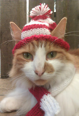 Cat Football Hat and Scarf - Handmade Knitted Xmas Birthday Gift. Many colours
