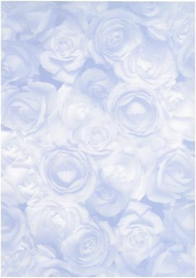 Blue Rose vellum paper -  Scrapbooking, card making, Invitations - 10 sheets