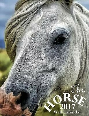 The Horse 2017 Wall Calendar by Aberdeen Stationers Co.