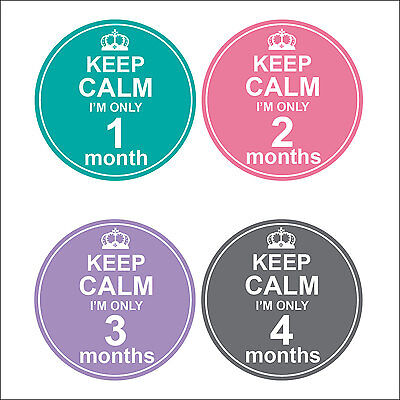 Personalised Monthly Baby Stickers, Milestone Stickers, Baby Shower Gift_G026