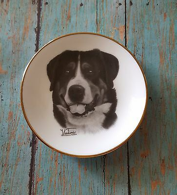 GREAT SWISS MOUNTAIN DOG Mini Collector Plate / Dog Gift Vladimir Greater