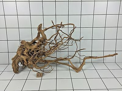 Red Moor Aquarium Wood Root Size Xl (Iwagumi Aquascaping Bogwood Driftwood)