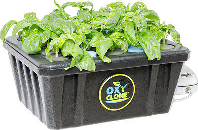 oxyCLONE  20, 40, or 80 Site Hydroponics Cloning System NEW *FREE SHIPPING