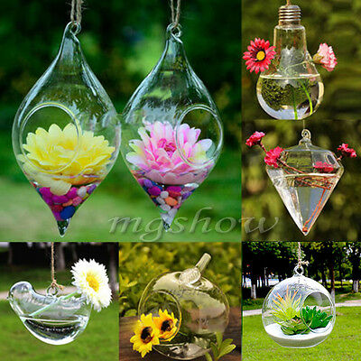 Hanging Glass Hydroponic Flowers Vase Pot Garden Wedding DIY Terrarium Container