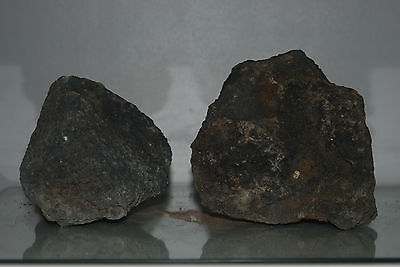 Natural Aquarium Lava Rock 2 Medium Sized Pieces Suitable for All Aquariums  41F
