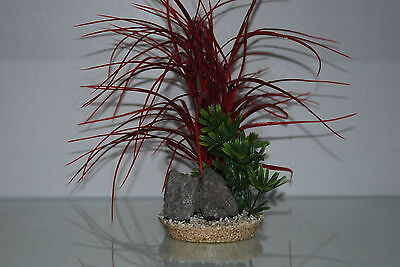 Aquarium Red & Green Grass and Rocks 11 x 11 x 30 cms Suitable For All Aquariums
