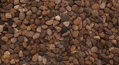 Aquarium Natural Gravel Round  4 to 6mm Grains  Aquariums 2.5 kg