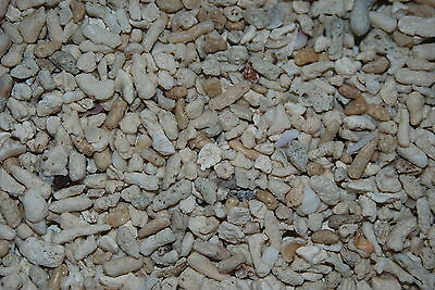 Aquarium Cichlid Coral Sand 3 Kilo Bag Size Approx 10mm Suitable for Aquariums