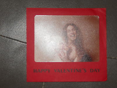 Ted Nugent - holiday card - Happy Valentine's Day