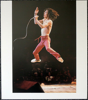 The Rolling Stones Poster Page 1975 Mick Jagger . Y59