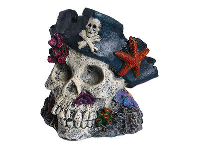 Pirate Human Skull Decoration Ornament for Aquarium Fish Tank