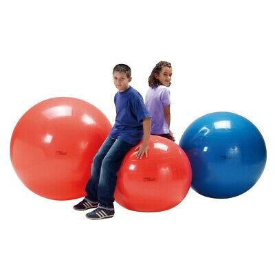 Gymnic Ballon de Fitness Physio Swiss Ball de Grossesse Balle Gym Yoga Pilates