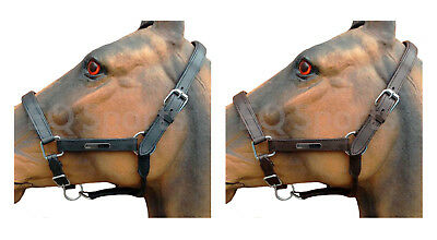 FREE P&P FANTASTIC VALUE Black & Brown Leather Padded Headcollar XF, Full, Cob,
