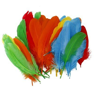 W6 Approximately 50 pcs Colored Multi-colored Goose Down 12 to 18 cm