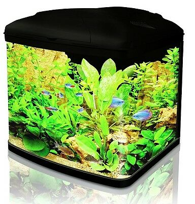Aquarium Fish Tank 48 Litre Curved Glass Cartridge Filter Cold Water Tropical