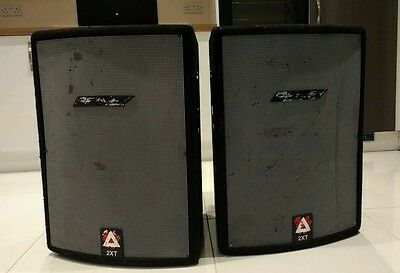 PEAVEY HiSys 2XT 350w RMS 4 OHM Professional SPEAKERS pair UK built