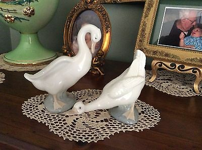 2 x Nao ( Lladro ) Ducks in as new condition