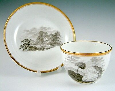 Lovely Antique 19Th Century Spode? Bat Print Bute Cup And Saucer C.1800