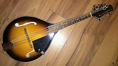 STAGG M40s mandolin with case, strap