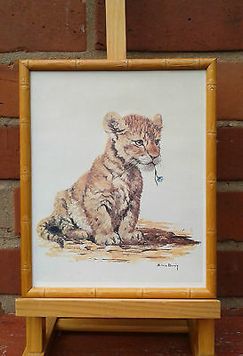Lion cub by Silvia Duran. Framed print.