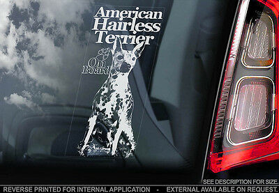 American Hairless Terrier - Car Window Sticker - Dog Sign -V02