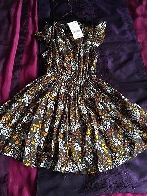 Bnwt Next Girls Dress Outfit Clothes Age 3/4 Years Dresses